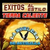 Exitos Al Estilo Tierra Cliente by La Nobleza De Aguililla