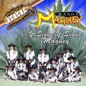 Y Sigue Y Sigue Maguey de Banda Maguey