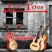 Interpretando Un Medley Muy Romantico by Los Trios
