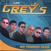 Mis Primeros Pasos by Los Grey's