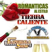 Romanticas Al Estilo Tierra Caliente by Various Artists