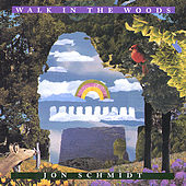 Walk In The Woods by Jon Schmidt