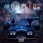 Feel It (Nothin' Like Me) by Aqualeo