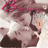 Burning Love 1 by Various Artists