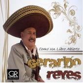 Como Un Libro Abierto by Gerardo Reyes