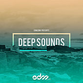 EDM.Com Presents: Deep Sounds de Various Artists