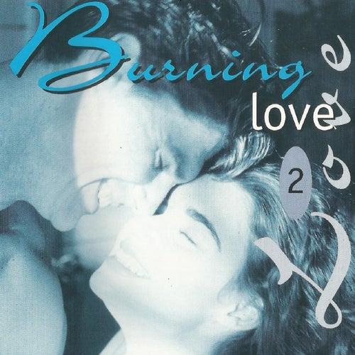 Burning Love 2 de Various Artists