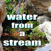 Meditate and Relax with Water From A Stream by Mindful Meditation