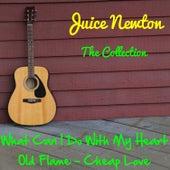 Juice Newton: The Collection von Juice Newton
