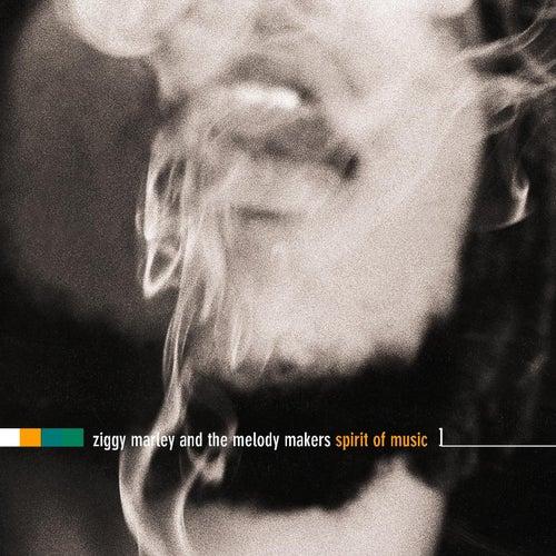 The Spirit Of Music by Ziggy Marley
