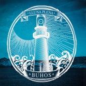 Lluna Plena by Buhos