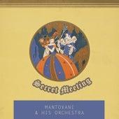 Secret Meeting von Mantovani & His Orchestra