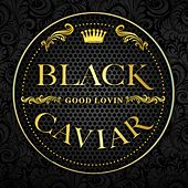 Good Lovin' by Black Caviar