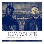 Sun Goes Down by Tom Walker