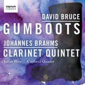 David Bruce: Gumboots – Johannes Brahms: Clarinet Quintet by Julian Bliss
