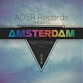 Amsterdam Night Grooves, Vol. 2 by Various Artists