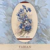Noble Blue van Fabian