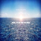Feel It In The Water by Terri Walker