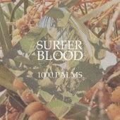 1000 Palms de Surfer Blood