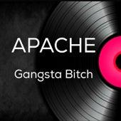 Gangsta Bitch by Apache