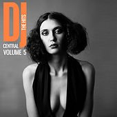 DJ Central The Hits, Vol. 5 de Various Artists