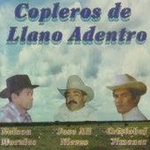Copleros de Llano Adentro de Various Artists