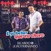 É Só Beber Que Eu Choro de Ricardo & João Fernando
