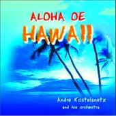 Atardecer en Hawaii Vol Ii by The Hawaiians