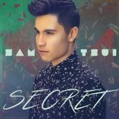 Secret by Sam Tsui