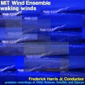 Waking Winds by MIT Wind Ensemble