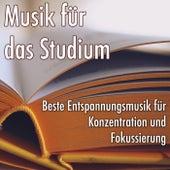 Musik für das Studium: Beste Entspannungsmusik für Konzentration und Fokussierung, Hintergrund Naturgeräuschen zum Lesen von Various Artists