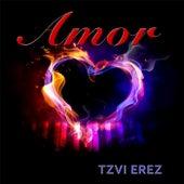 Amor by Tzvi Erez