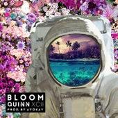 Bloom von Quinn XCII