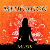 Meditation Musik für den Inneren Frieden - New Age Geräusche der Natur mit Klaviermelodien von Various Artists