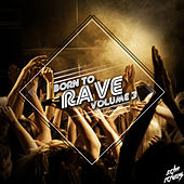 Born to Rave, Vol. 3 von Various Artists