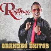 Grandes Éxitos de Rey Three Latino