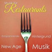Musik für Restaurants: Entspannende Hintergrund New Age Musik von Various Artists