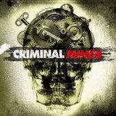 Criminal Minds (Main TV Theme Song) van Best Movie Soundtracks