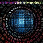 Sword and Stone von Victor Wooten