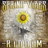 Spring Vibes Riddim by Various Artists