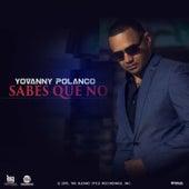 Sabes Que No by Yovanny Polanco