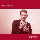 Michael Pelzel by Various Artists