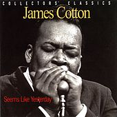 Seems Like Yesterday (Live) by James Cotton
