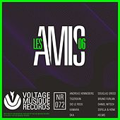 Les Amis 06 by Various Artists