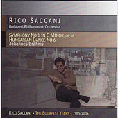 Brahms: Symphony No. 1 & Hungarian Dance No. 6 by Rico Saccani