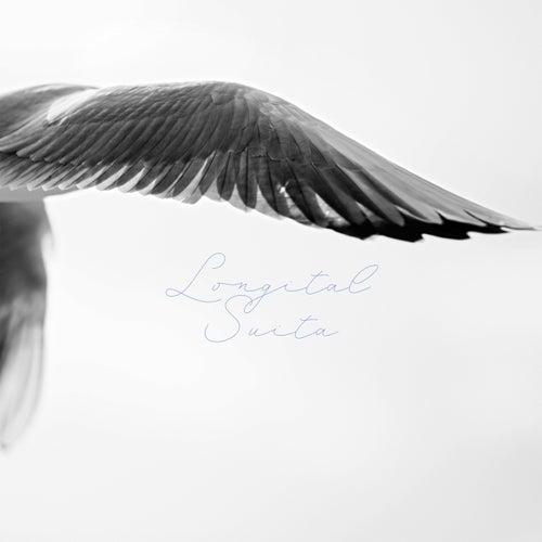 Longital Suita by Longital