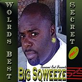 The World's Best Secret von Various Artists
