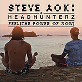 Feel (The Power Of Now) van Headhunterz
