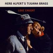 Love Caught by Herb Alpert