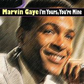 I'm Yours, You're Mine (14 Wonderful Hits And Songs from The Beginning) de Marvin Gaye